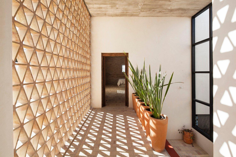 biophilic design_adrian_llaguno_Casa Iguana Obra Blanca