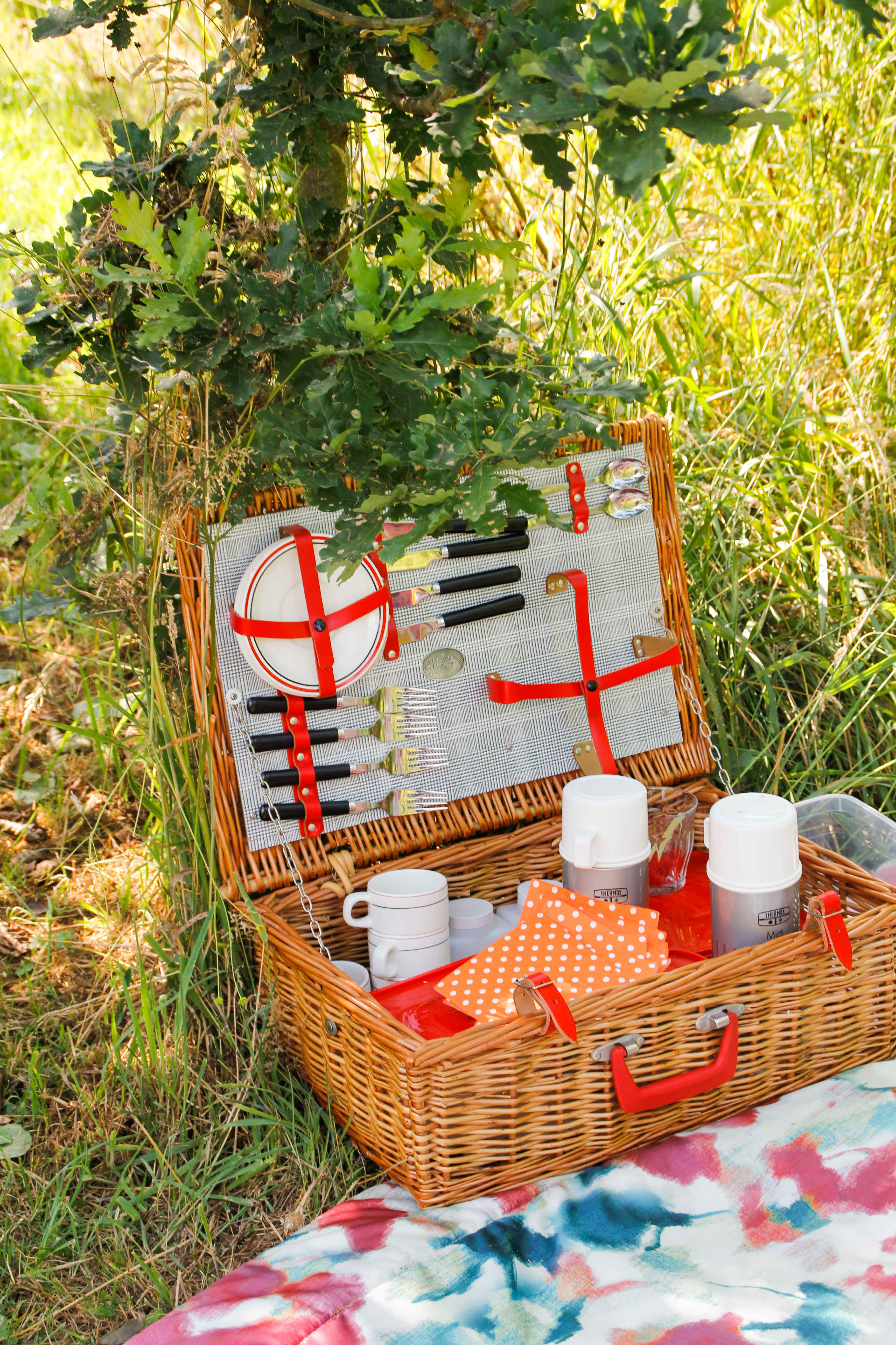 Picnic in the FR-One forest